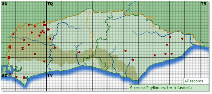 Distribution map for Phyllonorycter trifasciella