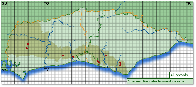 Distribution map for Pancalia leuwenhoekella