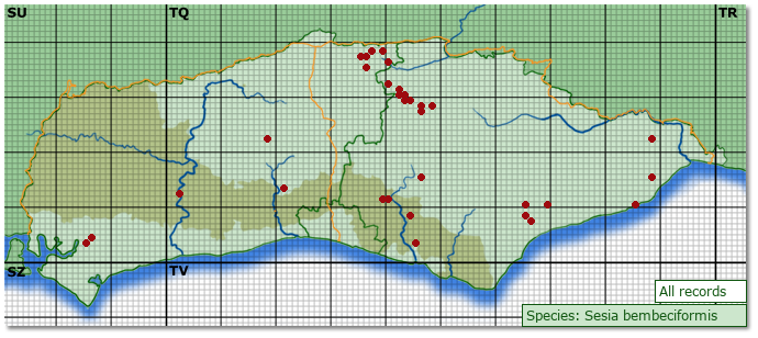 Distribution map for Sesia bembeciformis