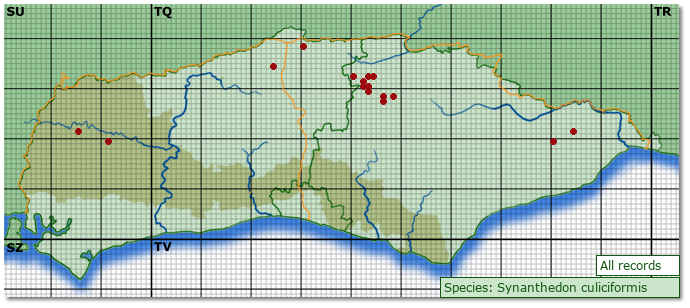 Distribution map for Synanthedon culiciformis