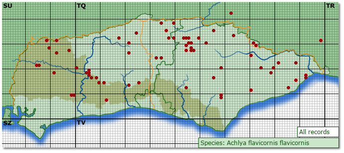 Distribution map for Achlya flavicornis