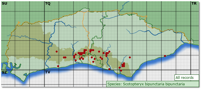 Distribution map for Scotopteryx bipunctaria