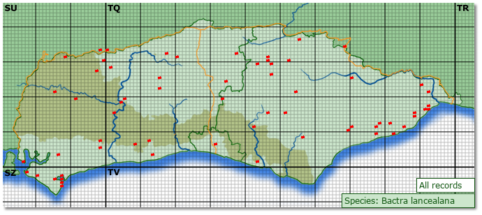 Distribution map for Bactra lancealana