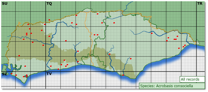 Distribution map for Acrobasis consociella