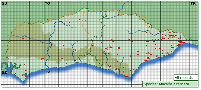Distribution map for Macaria alternata