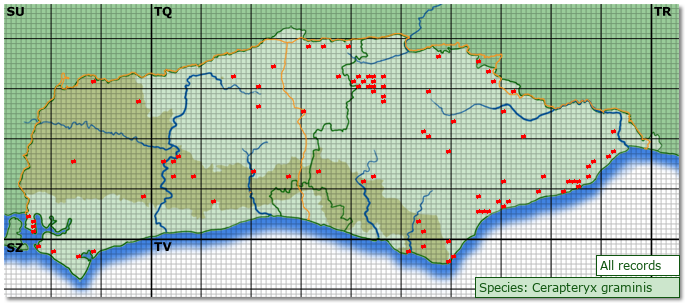 Distribution map for Cerapteryx graminis