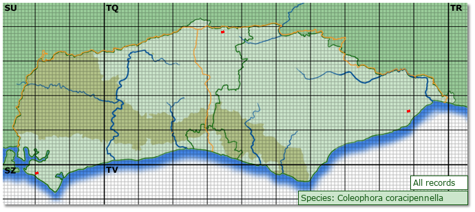 Distribution map for Coleophora coracipennella