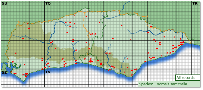 Distribution map for Endrosis sarcitrella